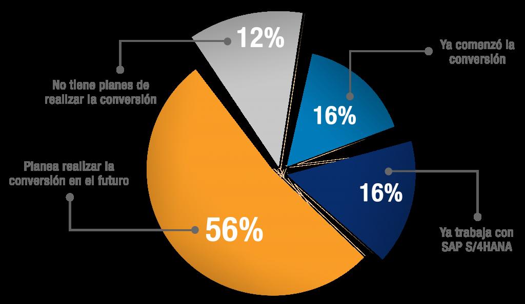 Grafico Implementacion SAP S4HANA-ES